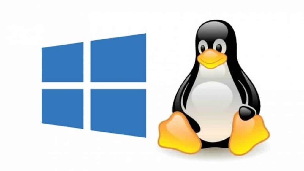 Hospedagem Linux ou Hospedagem Windows